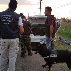 Olfateó. El can que detectó que algo no andaba bien en el auto.
