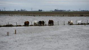 Rige un alerta a corto plazo por tormentas fuertes que abarca a la provincia Santa Fe