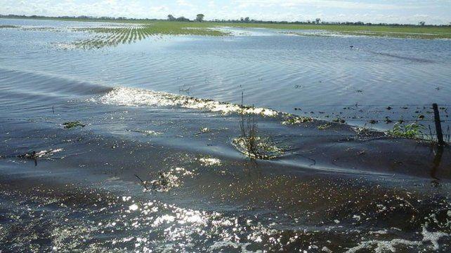 Convocarán a expertos climatológicos e hidráulicos para prevenir desastres hídricos