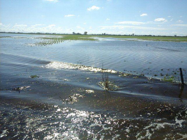 Desde Carsfe plantean la realización de obras que atemperen el impacto de las lluvias.