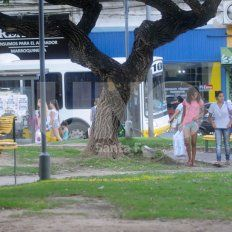 La iniciativa busca recuperar este espacio verde ubicado en San Jerónimo y Mendoza, corazón del centro santafesino.