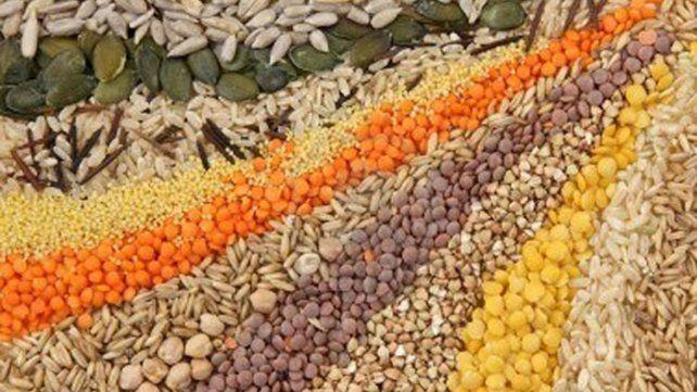 Incorporar semillas a la dieta, ¿una tendencia de consumo saludable?