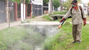 El Municipio retoma las tareas de fumigación en la ciudad