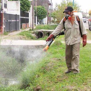 el municipio continua con las tareas de fumigacion en la ciudad