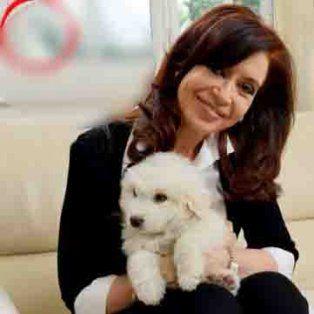 vivo con mi perra lolita, se sincero cfk, en su paso fugaz por comodoro py