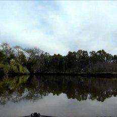 Sorpresa por la captura de una gigante criatura del río en Monte Vera