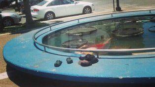 otra foto viral en la plaza 25 de mayo: tenia calor y decidio refrescarse en la fuente