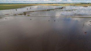 Crisis hídrica. El agua en los campos no baja