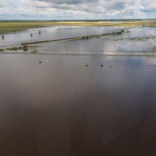 Crisis hídrica. El agua en los campos no baja, y ocasiona cuantiosas pérdidas en el sur provincial