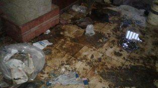 Deplorable. Este era el estado de la casa en la que se encontraba la pequeña.