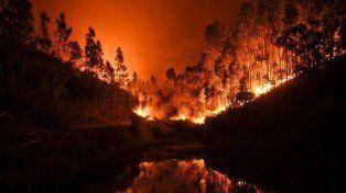 Otra tragedia en Europa: 57 personas murieron en un incendio forestal