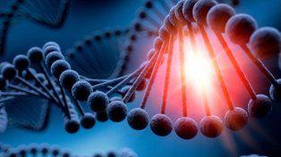 Las diez cosas que se heredan por ADN