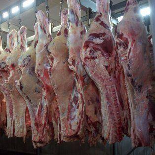 el garron a china y el bife a europa: conoce los cortes que argentina le vende al mundo