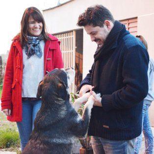 castello: los animales nos hacen mas humanos