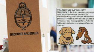 Un viral contra el maltrato animal busca impugnar el voto