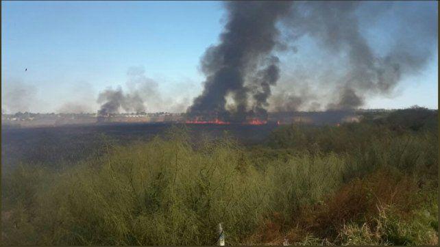 En lo que va del año, los bomberos ya apagaron 95 quema de pastizales