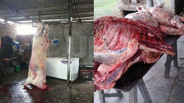 Faenamiento clandestino: secuestraron 240 kilogramos de carne vacuna