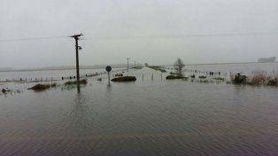 Declararon la emergencia agropecuaria en Buenos Aires, Chaco y La Pampa
