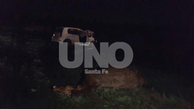 El auto blanco que viajaba hacia el oeste se fue a la banquina. El caballo que chocó quedó tendido en la ruta.