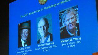 Hallazgos sobre el reloj biológico ganan Nobel de Medicina