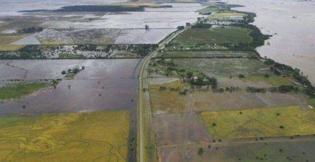 Declaran la emergencia agropecuaria en dos departamentos de Santa Fe
