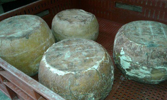 Decomiso de productos lácteos en el sur de Santa Fe