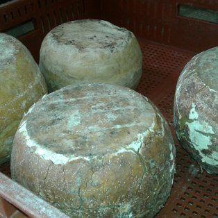 decomiso de productos lacteos en el sur de santa fe