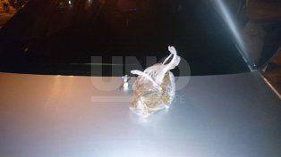 Lo pescaron cuando vendía drogas en un auto robado