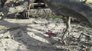 Una rama de un árbol golpeó a un oficial policial en la cabeza y lo mató