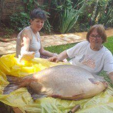 Pescó un pacú de casi 30 kilos en la costanera