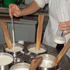 Santafesinos crearon un yogur para personas con intolerancia a la lactosa