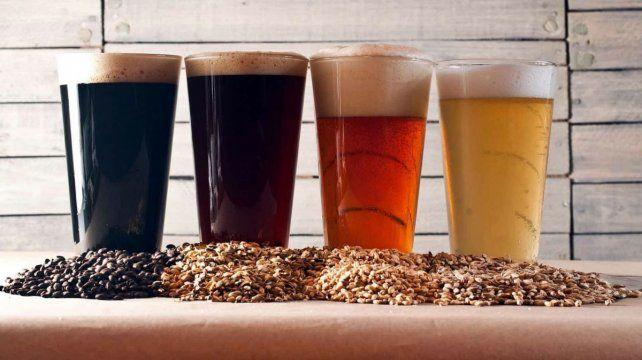 El rubro de elaboración de cerveza artesanal ahora tiene reglamentación