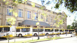 Transporte público: se renovaron todas las unidades de la línea 16