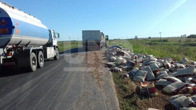 Un camión perdió la carga de alimentos balanceados y obstruyó la ruta provincial 17