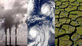 Más de 15.000 científicos lanzan una nueva advertencia para proteger el planeta