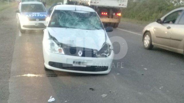 Esperanza: un automovilista chocó una vaca y resultó con heridas leves