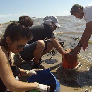 contaminacion: casi 100 botellas plasticas por kilometro en la laguna setubal
