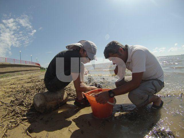 Investigación. Participantes del muestreo en la laguna Setúbal: Dr. Martín Blettler