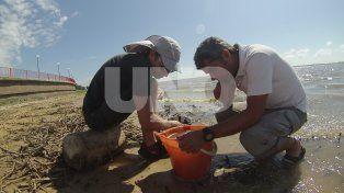 Investigación. Participantes del muestreo en la laguna Setúbal: Dr. Martín Blettler, Dr. Luis Espinola, Lic. Eliana Eberle, y Lic. Ana Pia Rabuffetti (Fotografía: Gentileza Martín Bletter)