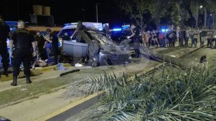 Escaparon de un control policial a toda velocidad, tumbaron y tiraron abajo una palmera