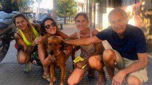 Macetita, otro perro callejero que encontró una familia