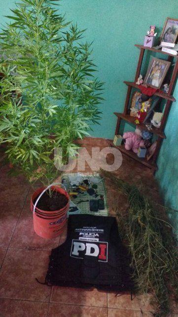 Desbarataron una banda que comerciaba cocaína y marihuana en el departamento de Vera