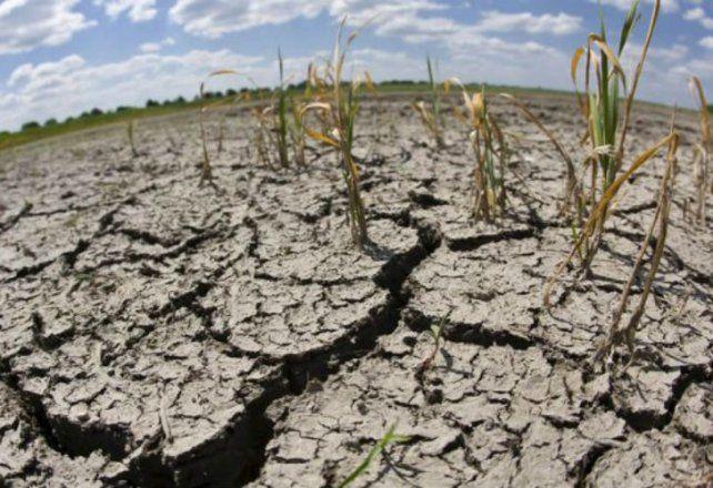 Sin lluvias: de los últimos 12 meses, diez registraron déficit hídrico