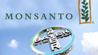 La increíble cifra que pagó Bayer para quedarse con Monsanto