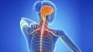 Una nueva terapia innovadora para la esclerosis múltiple ya está disponible en Argentina