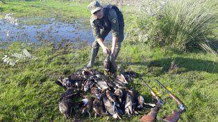 Arroyo Leyes: secuestraron 347 patos crestones depredados
