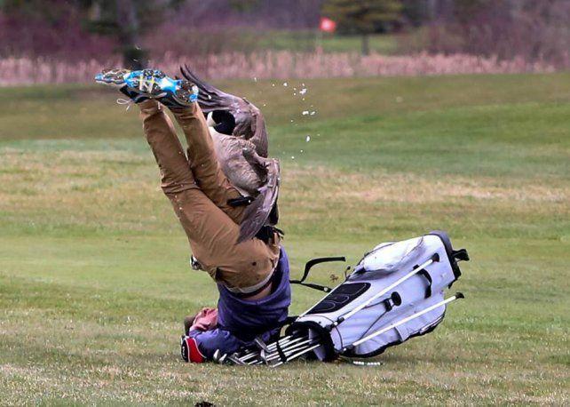 Un ganso enfurecido atacó a un golfista en pleno partido