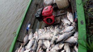 Secuestraron 699 kilos de pescados depredados en la zona de islas de Arroyo Leyes