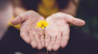 La importancia de la fe y el perdón