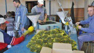 peligra el futuro de tinka, la fabrica santafesina de bolitas, la unica de sudamerica